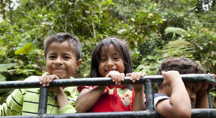 Los bosques juegan un rol primordial en la preservación del equilibrio social y ecológico.  Cerca de 1.600 millones de personas dependen de los bosques para sus subsistencia. Estos producen numerosos bienes, muchos de ellos con valores concretos en los mercados, tales como la madera o los productos farmacéuticos.