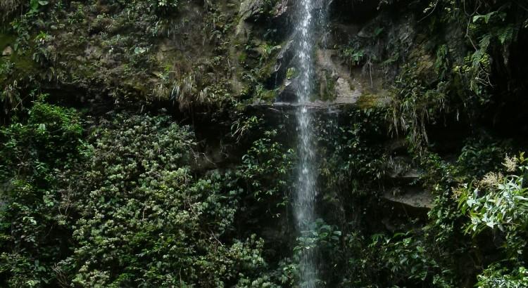 Cascade - écotourisme ©D.Tarrier