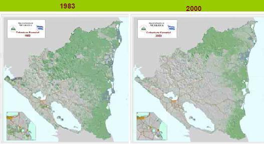 déforestation Nica
