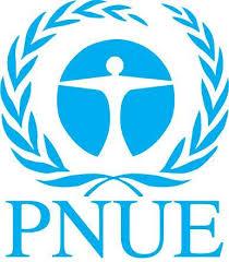 Logo PNUE