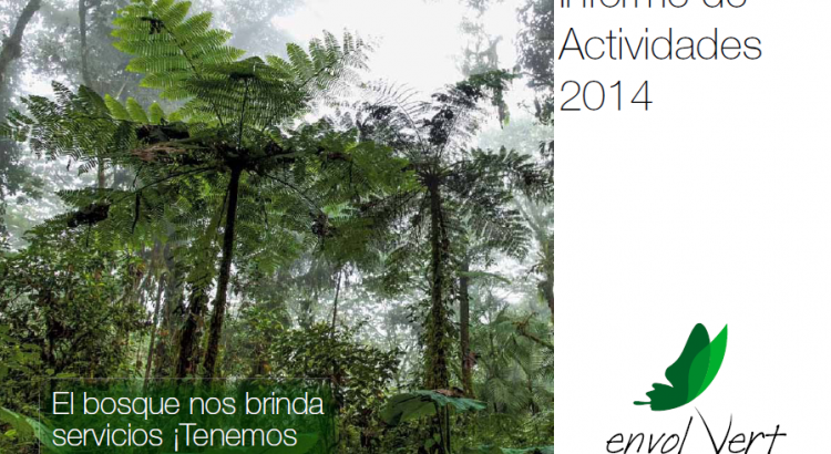 Informe de Actividades 2014