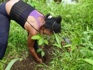 Plantacion-Guaimaro_21-300x225