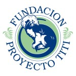 proyecto_titi_foundation