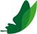 LOGO-envol-vert-petit