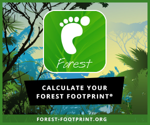 Calculate your forest footprint