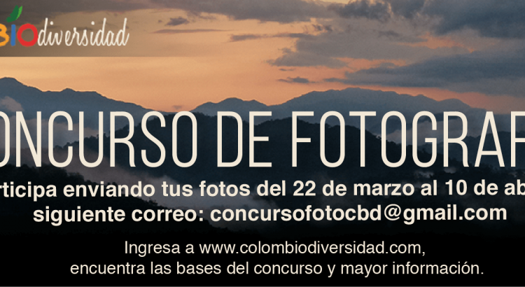 concurso-colombiod