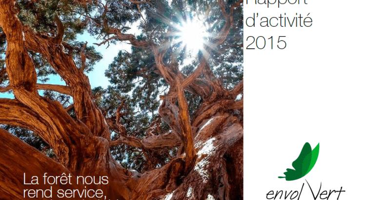 rapport_activite_2015