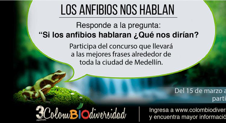 web_anfibios_1380X480