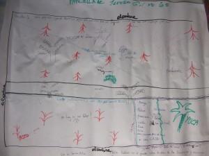 Projet noyer maya dessin des parcelles
