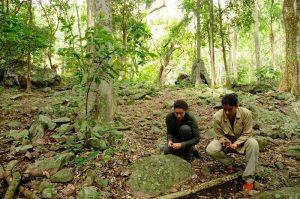 projet titi collecte Noyer maya valledupar
