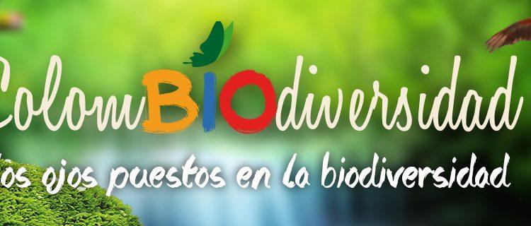 Bannière_colombio_diversidad_1280x320