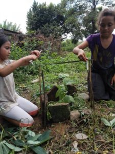 santa rita plantation d'arbres