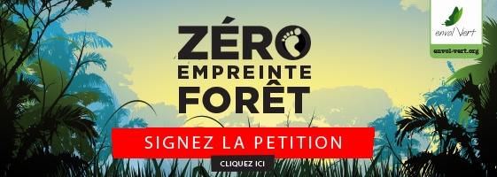 stratégie nationale de lutte contre la déforestation importée