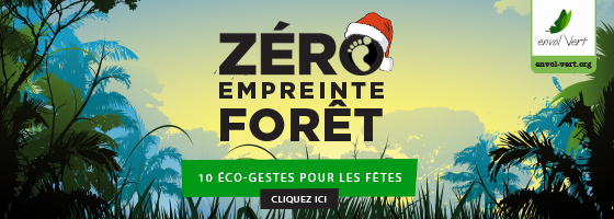 Header Eco-gestes