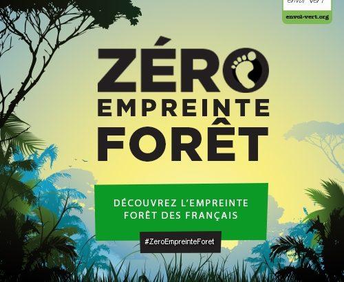 lancement rapport zef