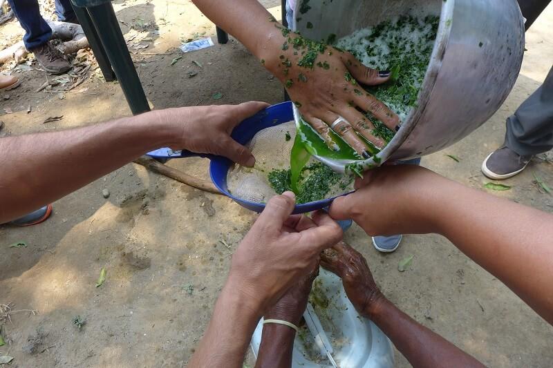 preparacion urea organica perija