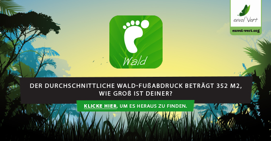 Le quizz Empreinte Forêt en allemand